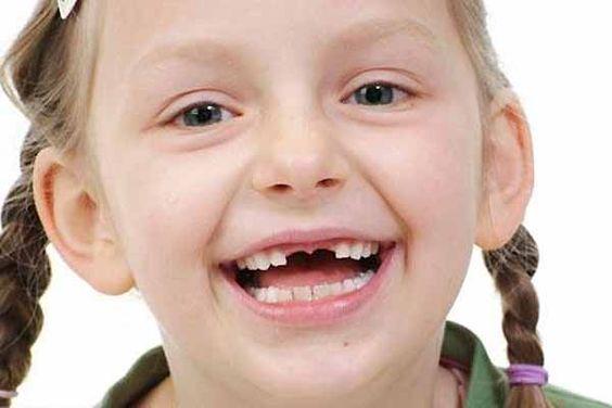 ¡Los propios libros de texto en la escuela de odontología indican que sanar las caries es posible!