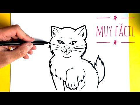Aprende Como Dibujar Un Gato Facil Paso A Paso Dibujo De Gato How To Como Dibujar Un Gato Dibujos De Gatos Perros Schnauzer