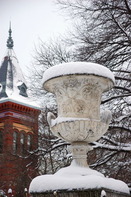 The Downing Urn in the Enid A. Haupt Garden.