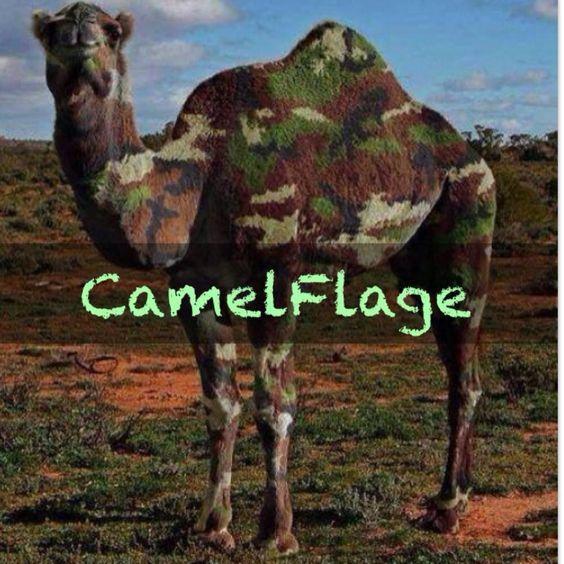 Camelflage via @cbrisley