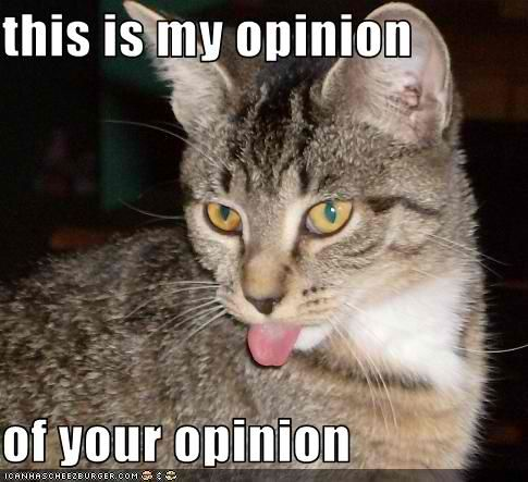 This is my opinion of your opinion.