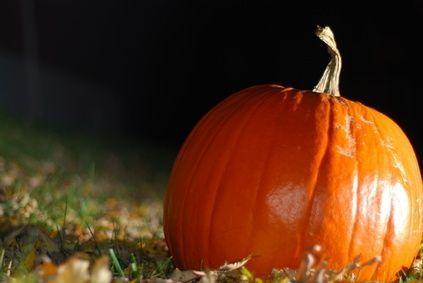 How to Make Concrete Pumpkins thumbnail