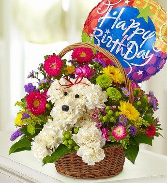 Flowers A Dog Able In Basket With Happy Jpg 345x378 Birthday Balloons