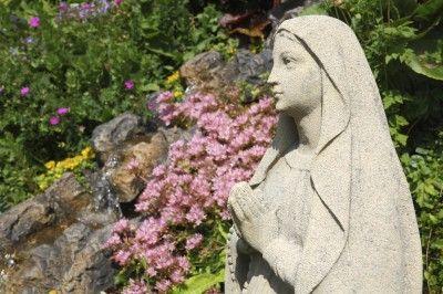 Garden plants garden design and gardens on pinterest for Garden design bible