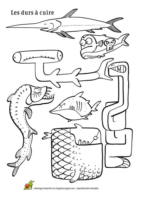 Les durs à cuire de la mer, dessin à colorier