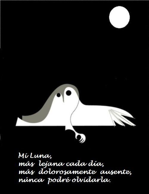 Mi Luna ausente.
