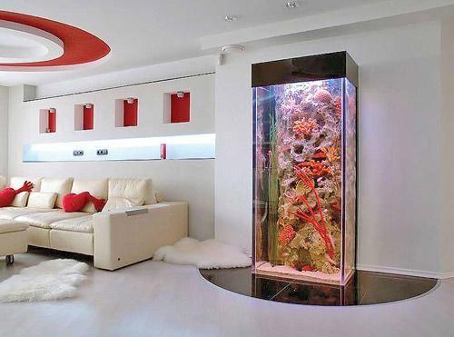 Fish aquariums glasses and modern interior design on for Modern fish tank