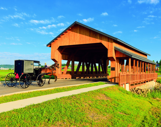 A sunny ride in Ohio's Amish Country. CLICK HERE for more about Ohio's Amish Country at www.OACountry.com! #Amish #Ohio #Tourism (Doyle Yoder photo)