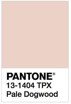 Pantone's 2017 Spring Colors are kale, hazelnut, lapis blue, niagara, primrose yellow, greenery, flame, island paradise, pink yarrow, and pale dogwood.: