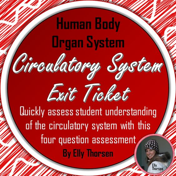 Use this quick assessment of the circulatory (cardiovascular) system to determine student understanding