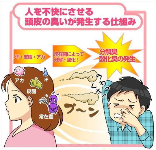の 匂い 対策 頭皮