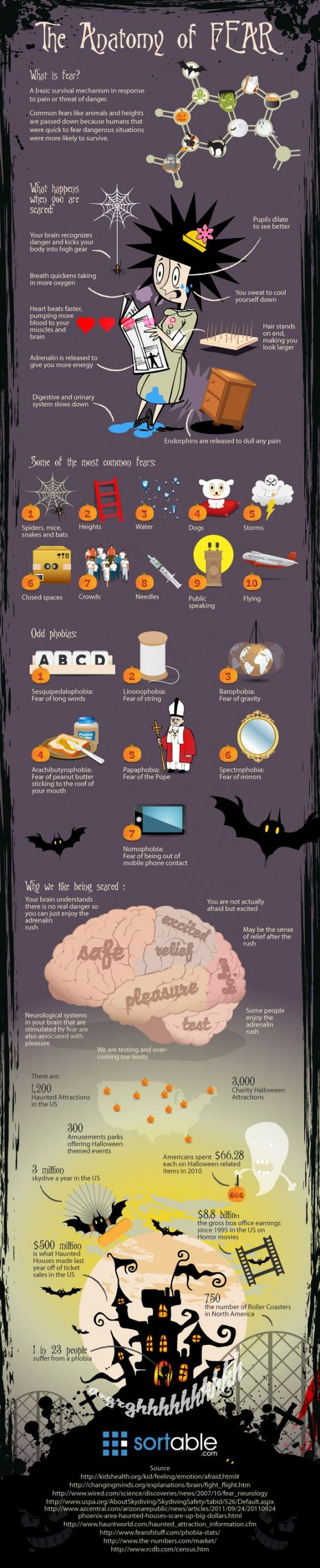 Humans more fit to fear dangerous situations survived more, therefore as a survival mechanism we've learned to have fears. This infographic shows what happens in our brains when we have fears and what people's most common fears are.: