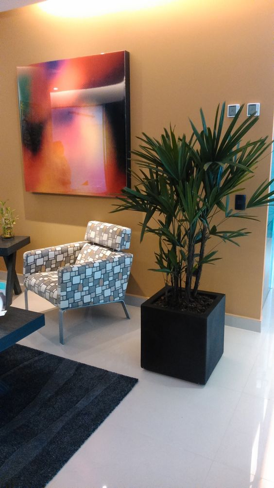 Palma raphis palma raffis maceteros para oficina for Muebles de oficina roldan palma