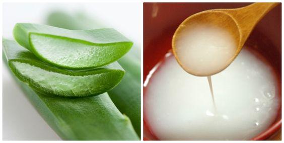 Nước vo gạo và nha đam giúp trị tàn nhang làm trắng sáng da