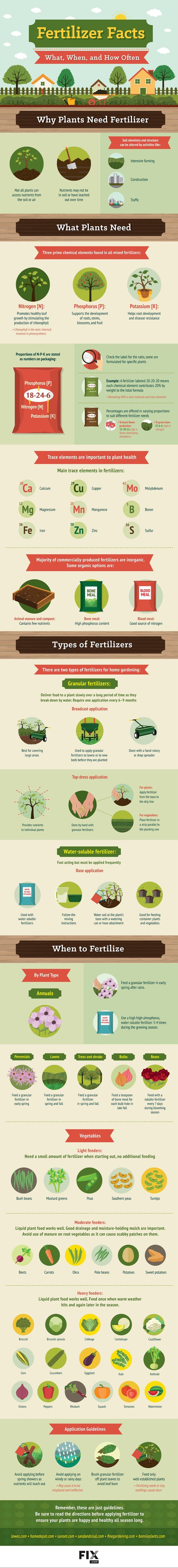 Fertilizer Facts What, When, and How Often #infographic #Gardening