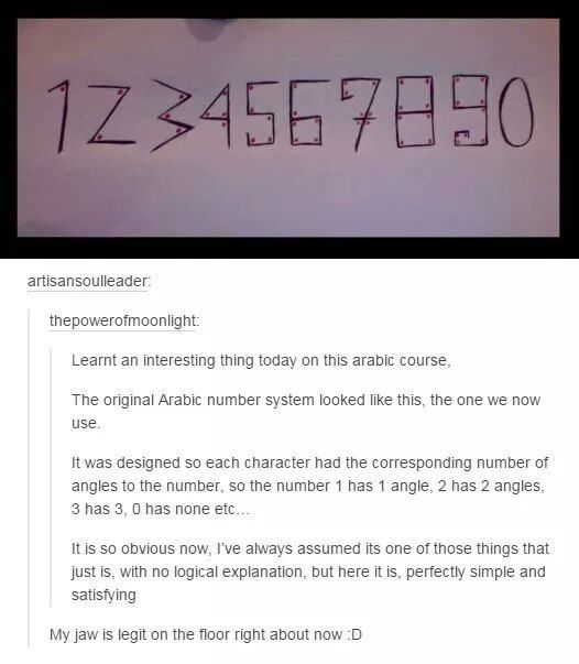 Why is the Book of Numbers in the Bible SO WEIRD?