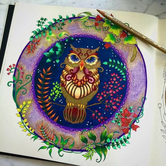 enchanted forest coloring pages owl - photo#12