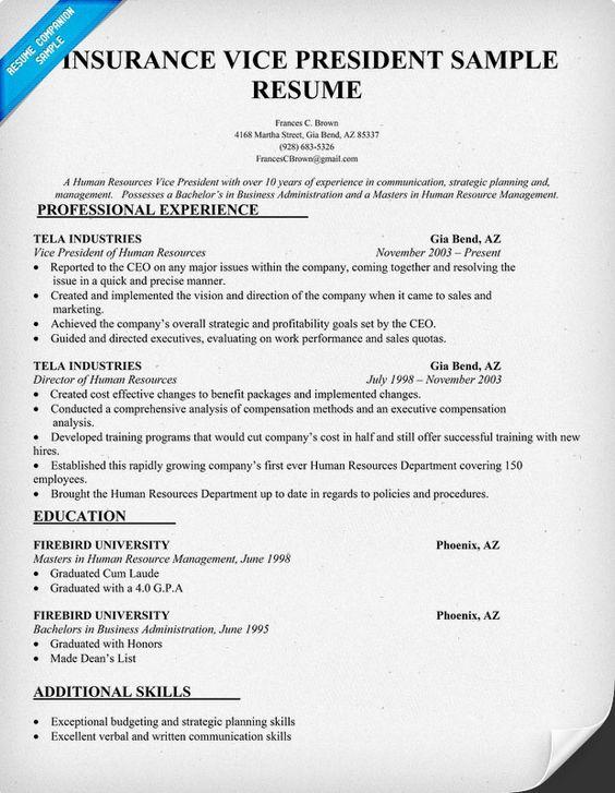 Insurance Vice President Resume Sample ResumecompanionCom