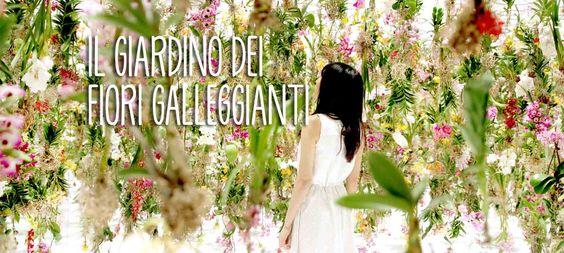 Il Giardino dei fiori galleggianti: tra arte e realtà. - Play viral