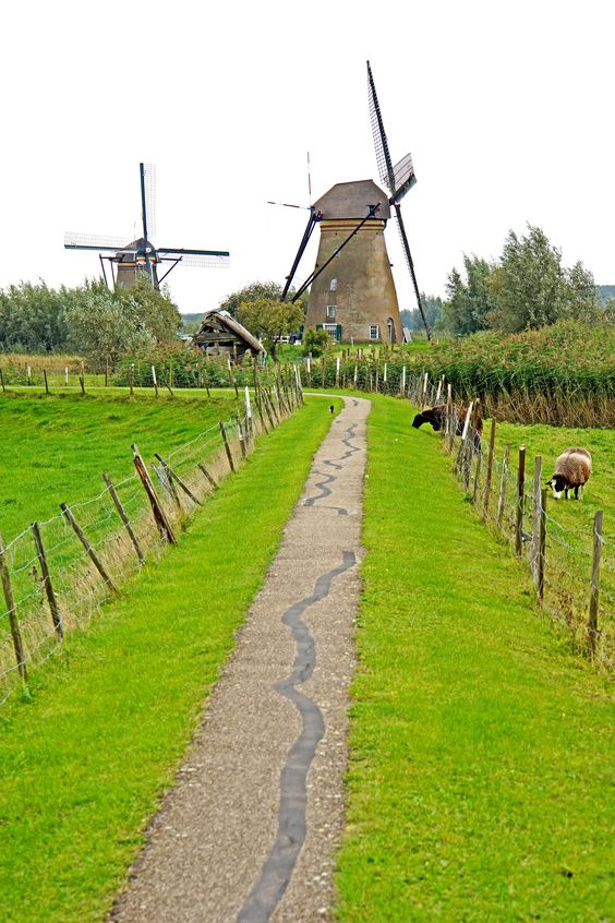 Bike paths and windmills in Dordrecht, South Holland, the Netherlands. Photo via…