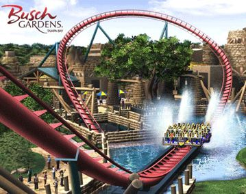 ZooZooReview: Busch Gardens, Tampa, FL | Tampa, FL | Pinterest | Gardens, Busch  Gardens Tampa Bay And Roller Coaster