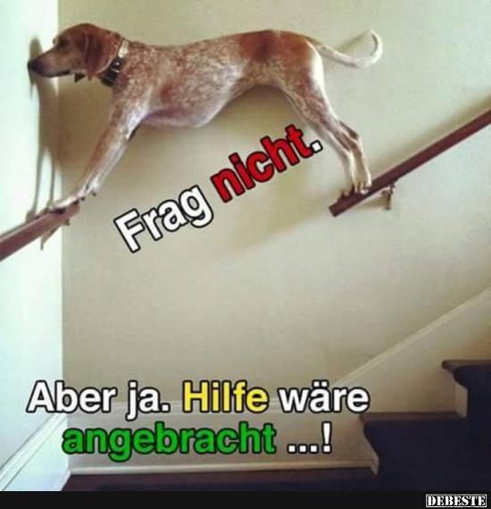 Besten Bilder, Videos und Sprüche und es kommen täglich neue lustige Facebook Bilder auf DEBESTE.DE. Hier werden täglich Witze und Sprüche gepostet! (Best Food Gifts)