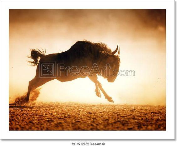 """""""Blue wildebeest running in dust - kalahari desert - south africa"""" - Art Print from FreeArt.com"""