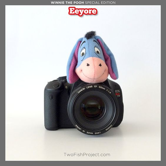 Camera Lens Covers Photography Accessories by TwoFishProject