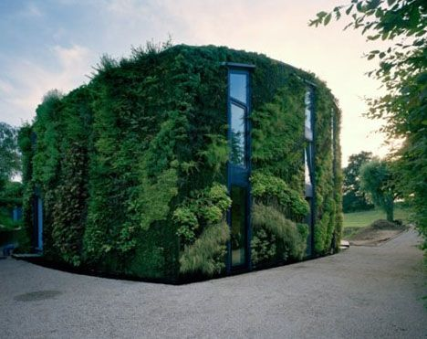 green wall house main:
