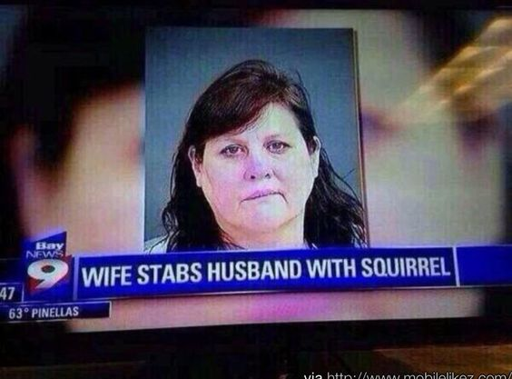 Wife stabbed husband with a ceramic squirrel..