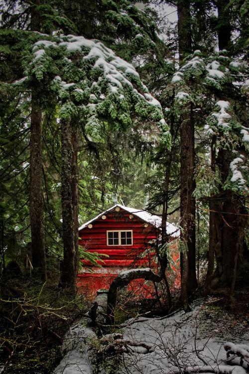 fc06e136aaadca996e4a61c188bf3308 - 14 Cozy Cabin Photos