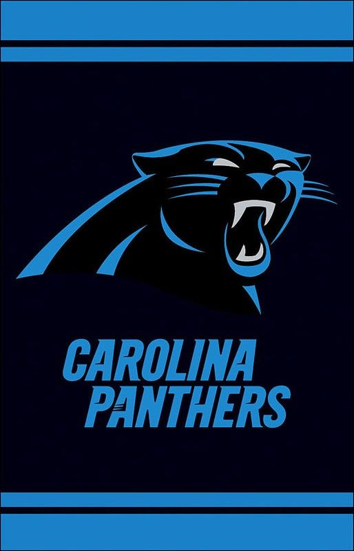 Carolina Panthers Fiber Optic Garden Flag Fans in the Garden