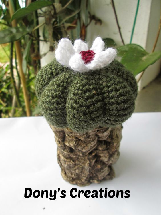 "Dony's Creations by Donatella Saralli : Cactus Zucca metodo di ""Created by Mina"" _ pattern free italiano"