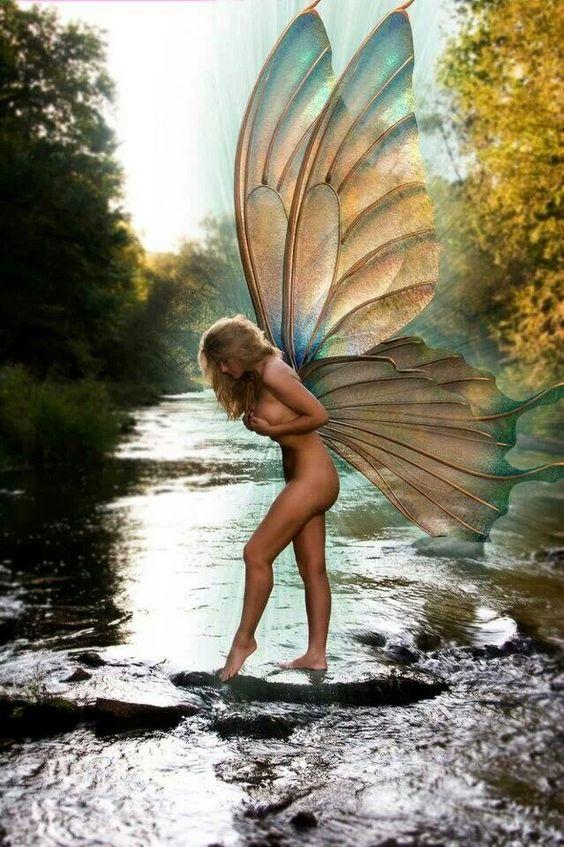 Naked Fairies Pics 28
