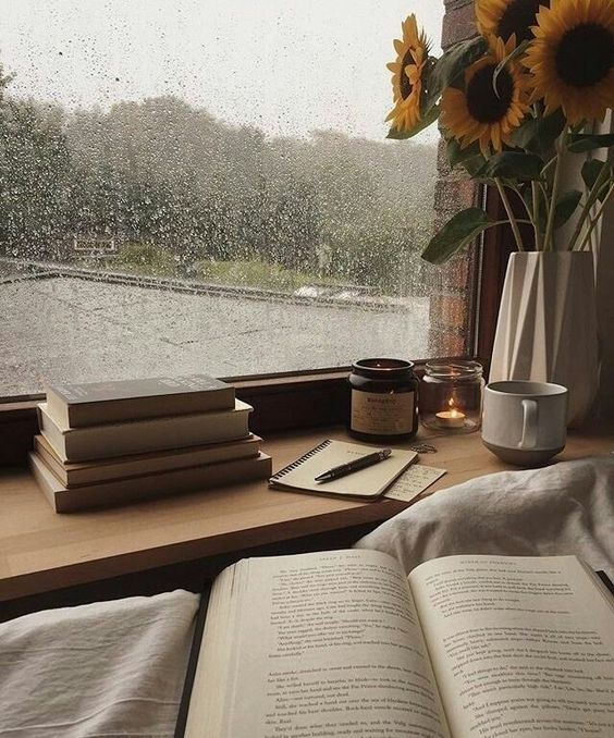 bibliotheque-la-nature: Books coffee and rain. What else could one want? My blog posts