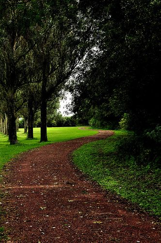 ˚Pathway - South Holland