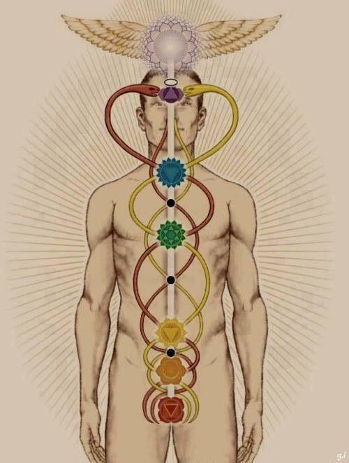 El masaje que balancea los siete chakras :: Masajes hiyomallorca: