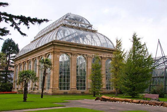 Royal Botanic Garden Edinburgh J037092 Jpg Plant Flower Stock Photography Gardenphotos Com Greenhouse Victorian Greenhouses Architecture