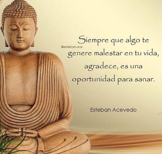 Pin En Budism