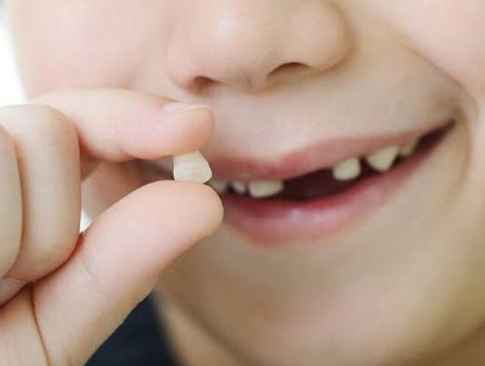 تفسير الأحلام سقوط الأسنان لابن سيرين موقع مصري In 2021 Baby Teeth Teeth Loose Tooth