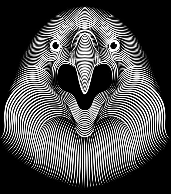 Eagle by Patrick Seymour, via Behance