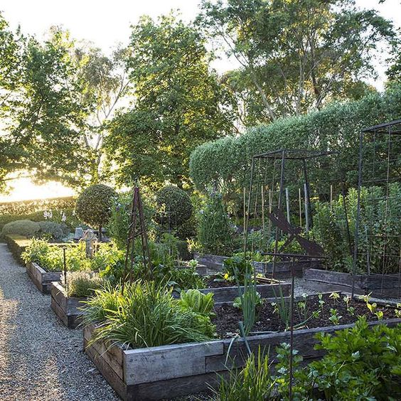 """Spring has sprung and it's time to get planting! Get our guide on where to start in the vegie patch.  Visit www.homestolove.com.au/outdoors  Photo:…"""