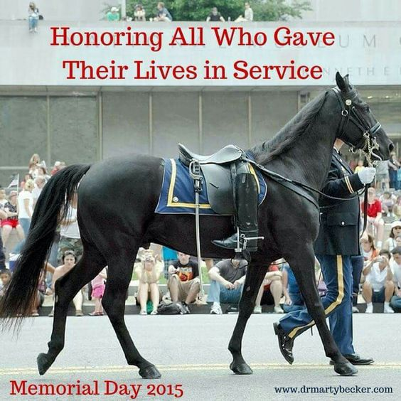 memorial day horse photos