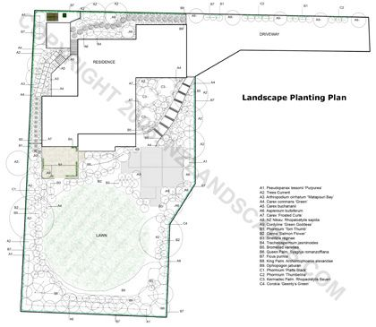 Plant plan, section and garden design, Auckland. New Zealand, NZ landscape design plans.