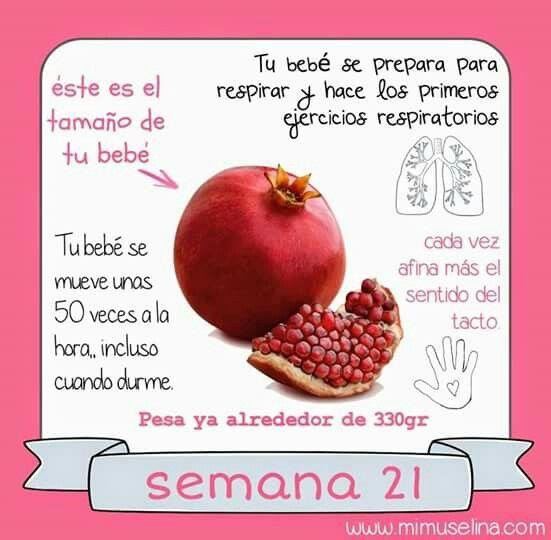 Pin De Tatiana Soto En Embarazo Alimentacion Embarazo Embarazo