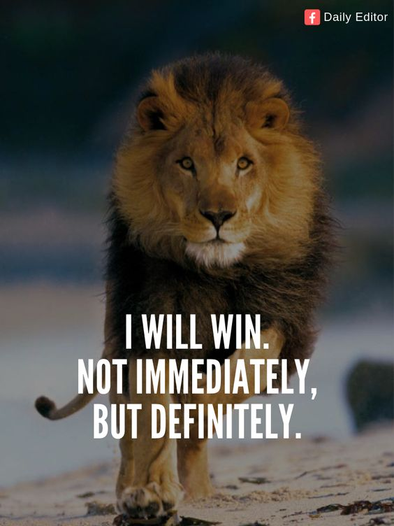I will win. Not immediately, but definitely.  #quotes #motivationalquotes #success #aim #positive #quotesforlife