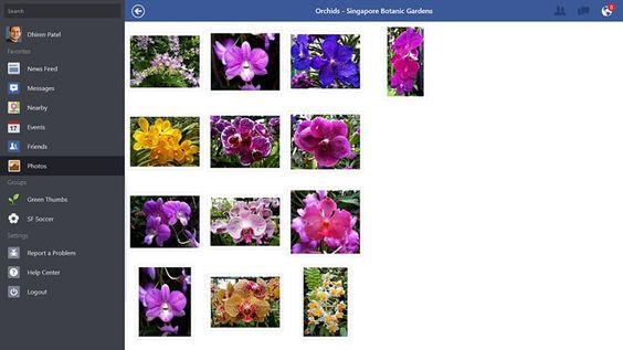 Facebook captura de tela 2