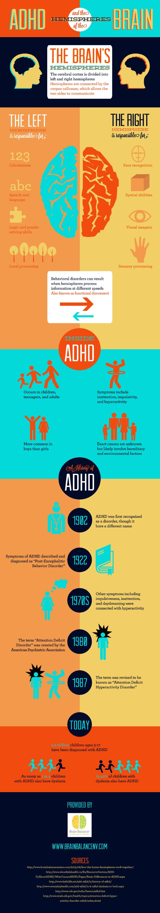 ADHD and The Brain Hemispheres (Infographic)