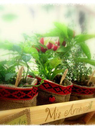 Kits de plantas arom ticas para usar en la cocina en - Decorar macetas con arpillera ...