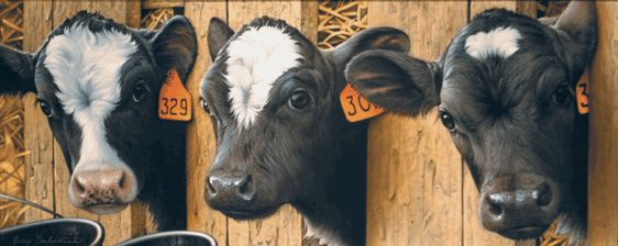 "Jerry Gadamus Limited Edition Print "" More Milk Please? "" cows"